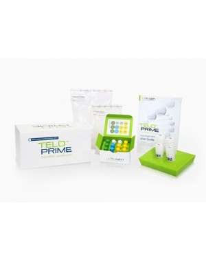 TeloPrime Full-Length cDNA Amplification Kit V2, 8 preps