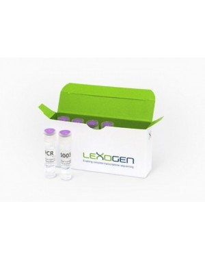 Lexogen i5 6 nt Unique Dual Indexing Add-on Kit (5001-5096), 1 rxn/Index