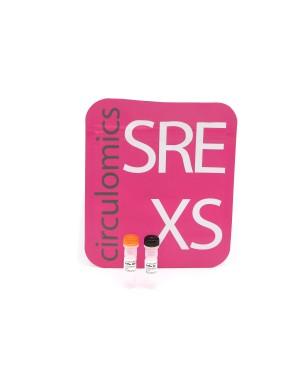Short Read Eliminator XS Kit