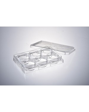 Cell Culture plate 6-Well, Sterilized Adhesive cells 50pcs