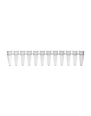PCR Strip of 12 Tubes clear 0.2 ml125/Case